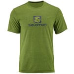 Salomon Explore Graphic Short-Sleeve Avocado