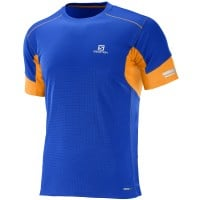 Salomon Agile SS Tee M Herren-Laufshirt Surf the Web
